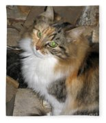 Grumpy Kitty With Emerald Eyes Fleece Blanket
