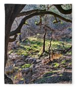 Guadalupe State Park Fleece Blanket