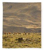 Guanaco Herd, Argentina Fleece Blanket