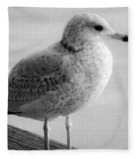 Gull On The Pier 2 Fleece Blanket
