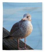Gull On The Pier Fleece Blanket