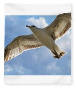 Gull - Out Of Bounds Fleece Blanket