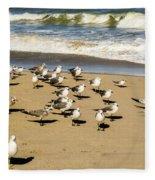 Gulls At The Beach Fleece Blanket