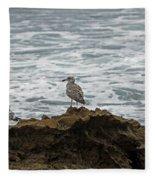 Gulls Podium  Fleece Blanket