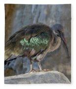 Hadada Ibis Fleece Blanket