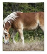 Haflinger 1 Fleece Blanket