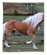 Haflinger Stallion Fleece Blanket