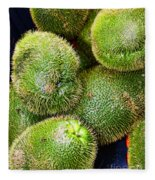 Hairy Peary Chayote Squash By Diana Sainz Fleece Blanket