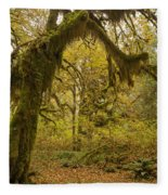 Hall Of Mosses 5 Fleece Blanket