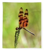 Halloween Pennant Fleece Blanket
