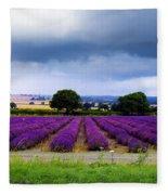 Hampshire Lavender Field Fleece Blanket