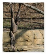 Hanging Chimp 365 Fleece Blanket