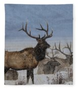Hanging Out With The Boys Fleece Blanket