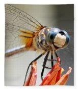 Happy Dragonfly Fleece Blanket