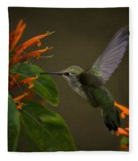 Happy Little Hummingbird  Fleece Blanket