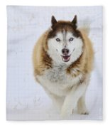 Happy Husky Fleece Blanket