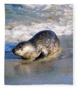 Harbor Seal Fleece Blanket