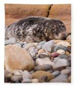 Harbour Seal   Fleece Blanket