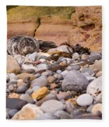 Harbour Seal On Pebble Beach Fleece Blanket