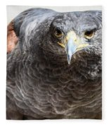 Harris Hawk Ready For Attack Fleece Blanket