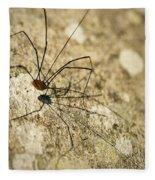 Harvestman Spider Fleece Blanket