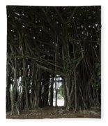 Hawaiian Banyan Tree - Hilo City Fleece Blanket