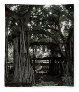 Hawaiian Banyan Trees Fleece Blanket