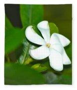 Hawaiian Gardenia Fleece Blanket