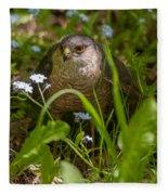 Hawk In The Grass Fleece Blanket