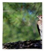 Hawk In Tree Fleece Blanket