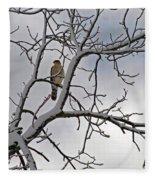 Hawk In Winter Fleece Blanket