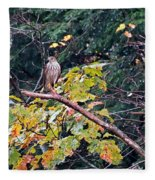 Hawk On A Limb Fleece Blanket