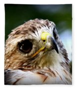 Hawk - Raptor - Living The Good Life Fleece Blanket