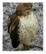 Hawk V3c Fleece Blanket