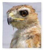 Hawkeye Fleece Blanket