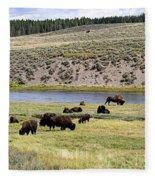 Hayden Valley Bison Herd In Yellowstone National Park Fleece Blanket