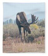 Head Lowered Bull Moose Fleece Blanket