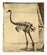 Heavy Footed Moa Skeleton Fleece Blanket