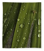 Heavy Rain Fleece Blanket