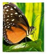 Hecale Longwing Butterfly Fleece Blanket