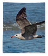 Heermanns Gull Fleece Blanket