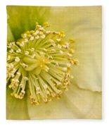 Heleborus 2 Fleece Blanket