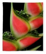 Heliconia Wagneriana - Giant Lobster Claw Heliconiaceae - Maui Hawaii Fleece Blanket