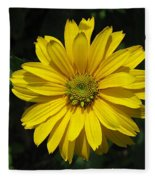 Heliopsis Summer Sun Fleece Blanket
