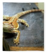 Here Lizard Lizard Fleece Blanket