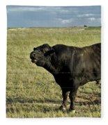 Hereford Bull Fleece Blanket