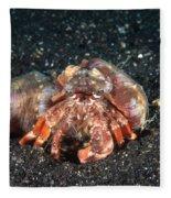 Hermit Crab With Anemone Fleece Blanket