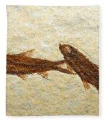 Herring Fish Fossil Fleece Blanket