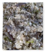 Herring Roe Ashore Fleece Blanket