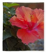 Hibiscus 2 Fleece Blanket